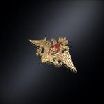 Серебряный фрачник Министерство обороны РОССИИ